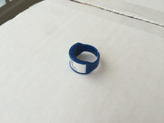 Landauer Ring TLD